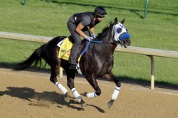 Dave Contarino Explains Horse Qualifying in the Kentucky Derby