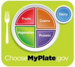 U.S. Department of Agriculture Introduces MyPlate