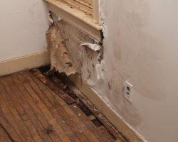Treating Mold Inside Walls